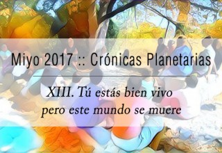 Cronicas_2017_13
